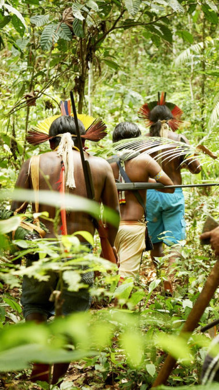 Indigenous peoples in rainforest